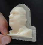 Final printed model (2)